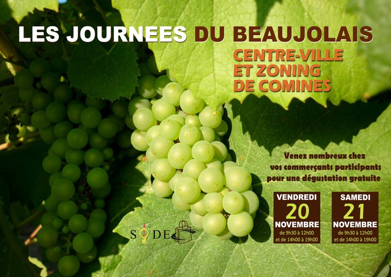 base affiche beaujolais 2015 (sans tombola)